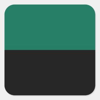 Bandeira de Texel Adesivo Quadrado