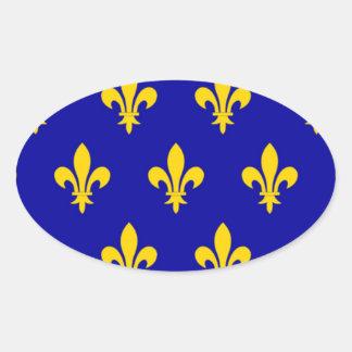 Bandeira de Touraine (France) Adesivos Em Formato Ovais