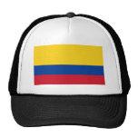 Bandeira do mundo de Colômbia Bonés