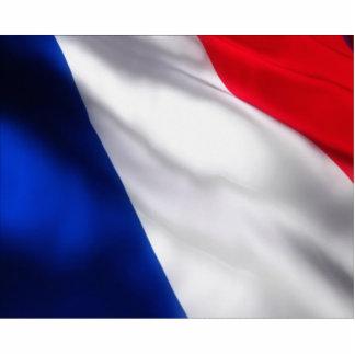 Bandeira francesa de ondulação escultura fotos