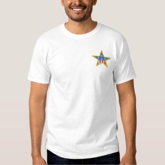 Bandeira na estrela