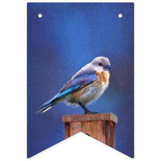 Bandeirinha Bluebird (fêmea)