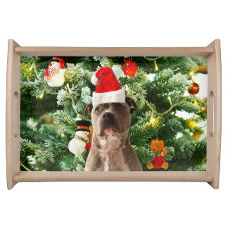 Bandeja A árvore de Natal do cão de Pitbull Ornaments o
