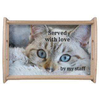 Bandeja Amante bonito do gato personalizado servindo a
