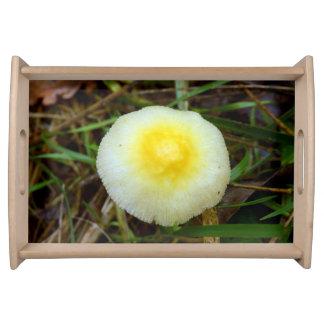 Bandeja amarela do serviço do cogumelo do boné de