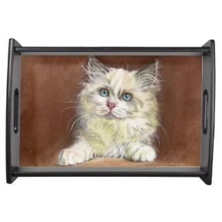 Bandeja Arte do gatinho de Ragdoll
