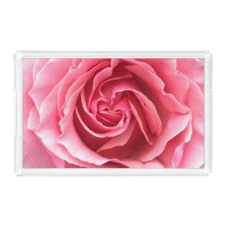Bandeja com fim acima da foto do rosa do rosa