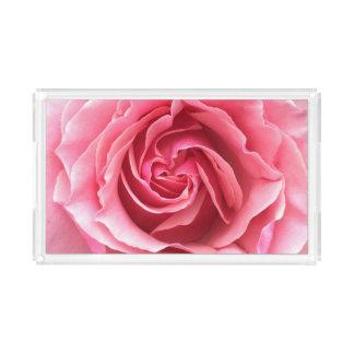 Bandeja com uma fotografia de um rosa bonito do