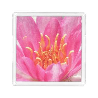 Bandeja cor-de-rosa do perfume do Fim-Acima do