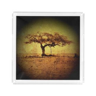 Bandeja De Acrílico Árvore rústica