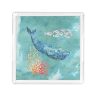 Bandeja De Acrílico Baleia azul ID368 da aguarela