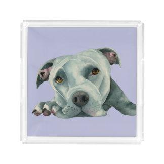 Bandeja De Acrílico Cabeça grande de Ol - pintura da aguarela do cão
