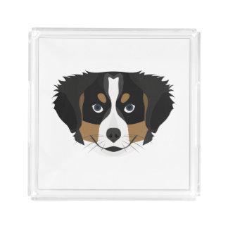 Bandeja De Acrílico Cão de montanha de Bernese da ilustração
