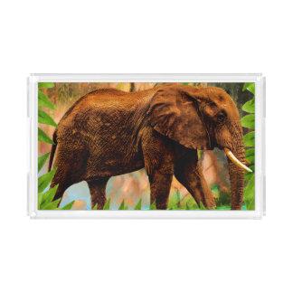 Bandeja De Acrílico Elefante na selva