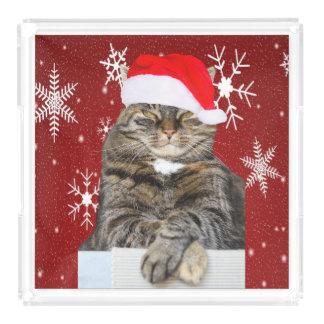 Bandeja De Acrílico Foto do gato do Natal no floco de neve do chapéu