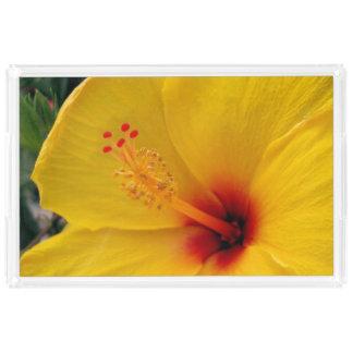 Bandeja De Acrílico Hibiscus