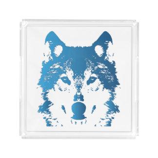 Bandeja De Acrílico Lobo do azul de gelo da ilustração