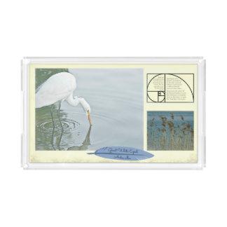 Bandeja De Acrílico O grande Egret branco --- Retangular