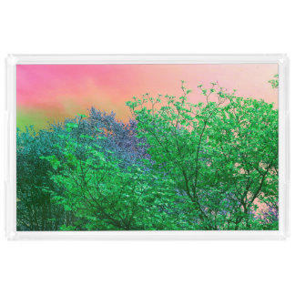 Bandeja De Acrílico O néon vibrante do surrealismo colore partes