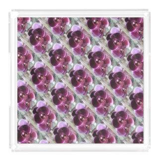 Bandeja De Acrílico Orquídeas de traça roxas escuras