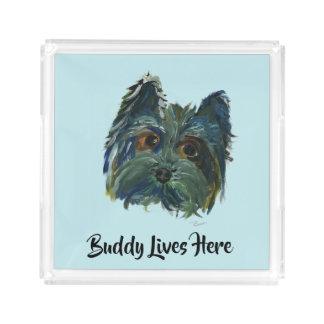 Bandeja De Acrílico Pop art bonito de Yorkie do cão no azul e no verde