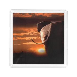 Bandeja De Acrílico Por do sol com elefante