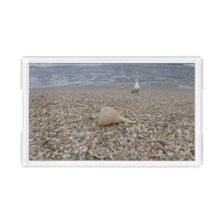 Bandeja De Acrílico Seashells e gaivota de mar
