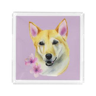 Bandeja De Acrílico Shiba Inu com pintura da aguarela de Sakura