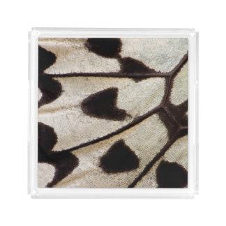 Bandeja De Acrílico Teste padrão da borboleta tropical