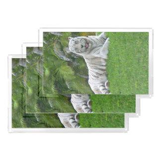 Bandeja De Acrílico Tigre e palmeiras brancos de sorriso