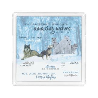 Bandeja De Acrílico Tipografia surpreendente | dos lobos personalizado