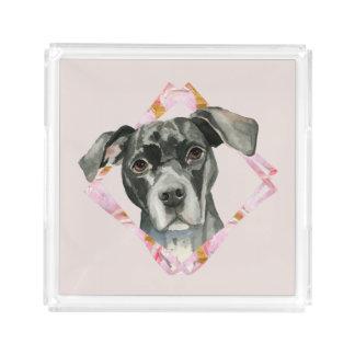 """Bandeja De Acrílico """"Todas as orelhas"""" pintura da aguarela do cão de 2"""