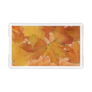 Bandeja do acrílico da folha do outono