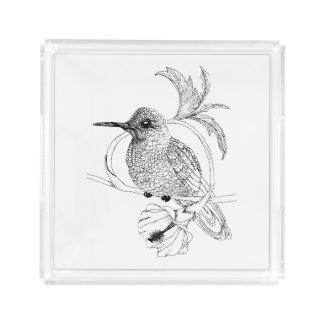 Bandeja do acrílico da ilustração do pássaro de