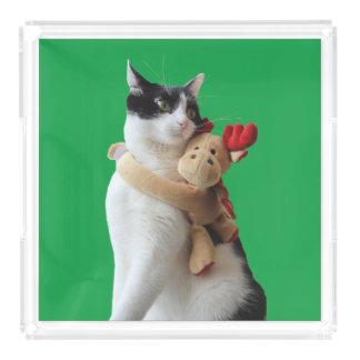 Bandeja do brinquedo do Natal do gato branco e