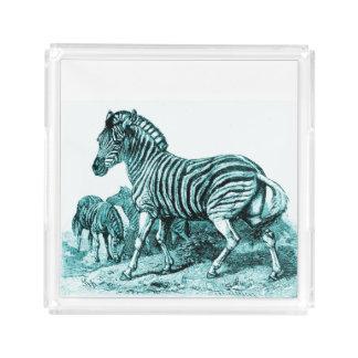 Bandeja do perfume da gravura da zebra