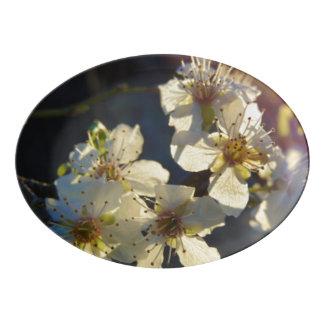 Bandeja do serviço da flor de cerejeira