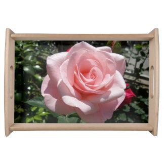 Bandeja do serviço do rosa do rosa