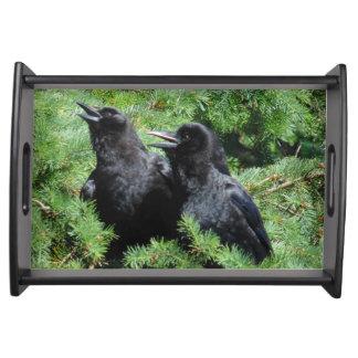Bandeja Dois corvos