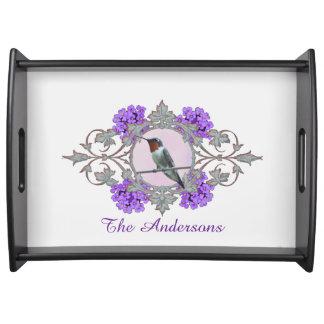 Bandeja Fotografia do colibri bonito, nome de família