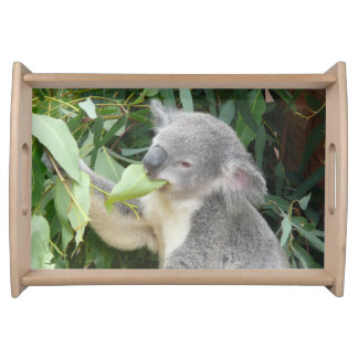 Bandeja Koala que come a folha da goma
