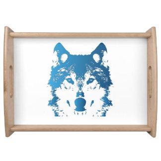 Bandeja Lobo do azul de gelo da ilustração