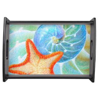 Bandeja Nautilus e estrela do mar