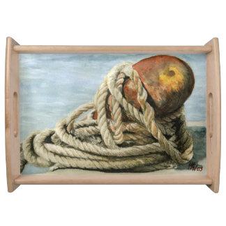 Bandeja Oxidação e cordas