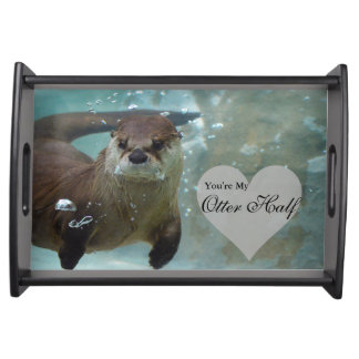 Bandeja Sua minha natação da lontra de rio de Brown da