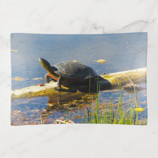 Bandejas Bandeja do Trinket da tartaruga