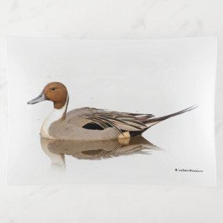 Bandejas Reflexões de um pato do arrabio do norte
