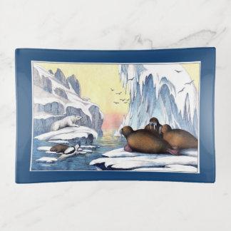 Bandejas Ursos polares, morsa, e selos