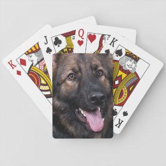 Baralho Alsatian do cão de german shepherd dos cartões de