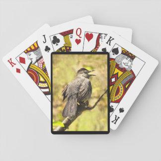 Baralho Cartões de jogo do Catbird cinzento do canto